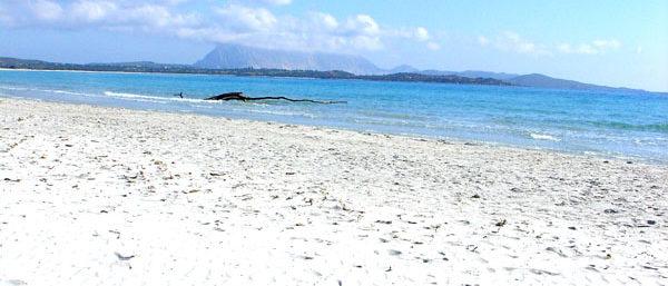 spiaggia con sfondo tavolara